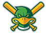 Madison Mallards logo